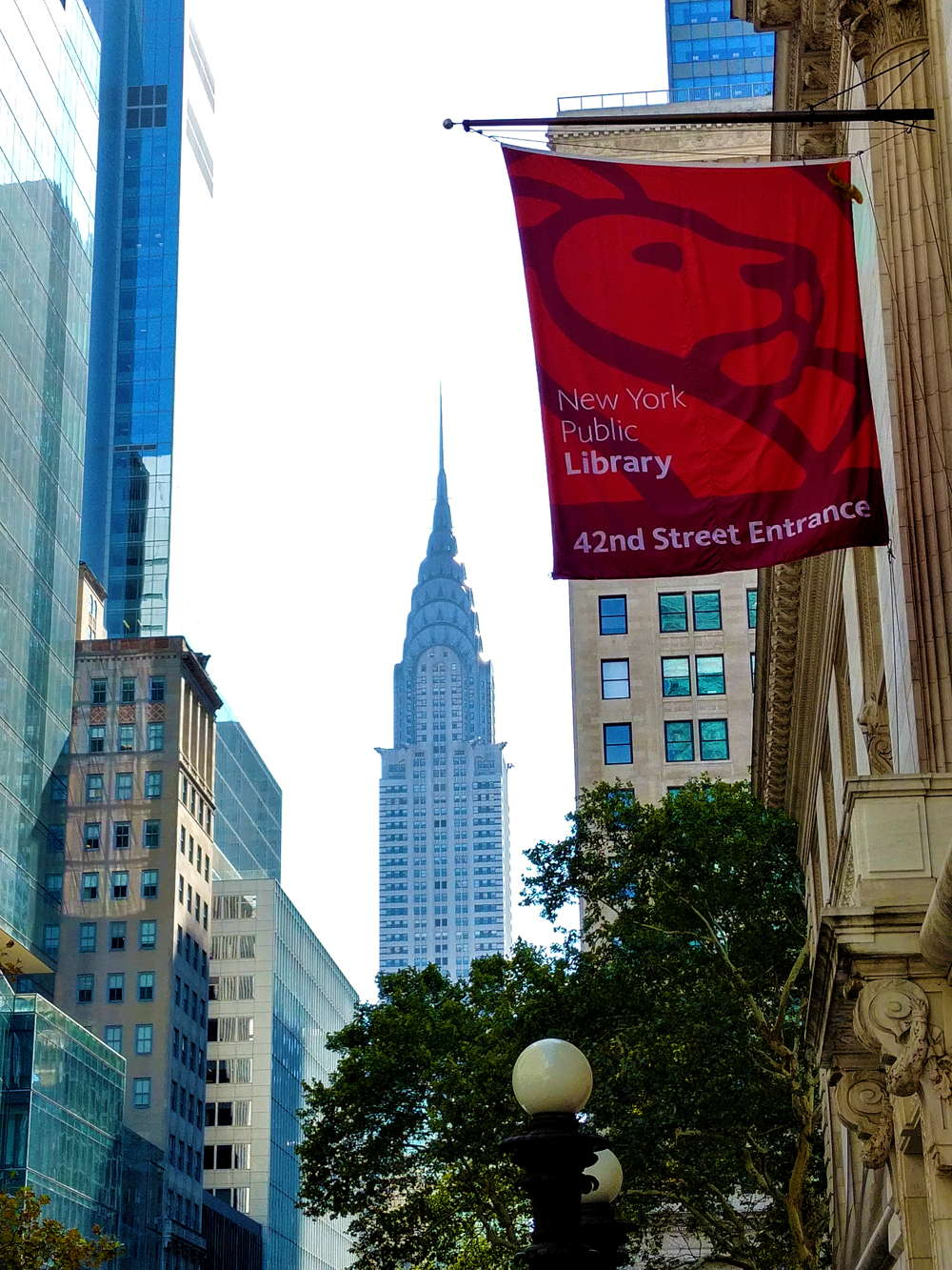 tour di new york in 3 giorni public library