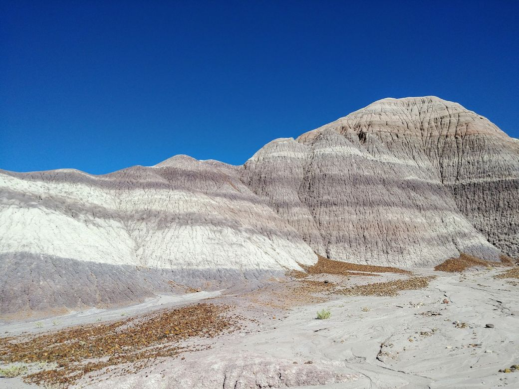 cosa-vedere-in-arizona-petrified-forest-blue-mesa